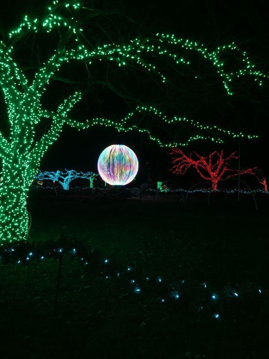Zoo Lights - PayneBrand