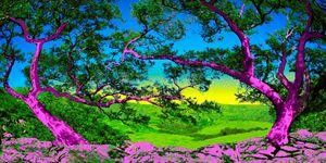 Pink Oaks
