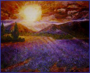 coucher de soleil sur les lavandes