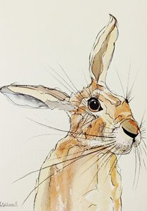 Hop Hare Listening