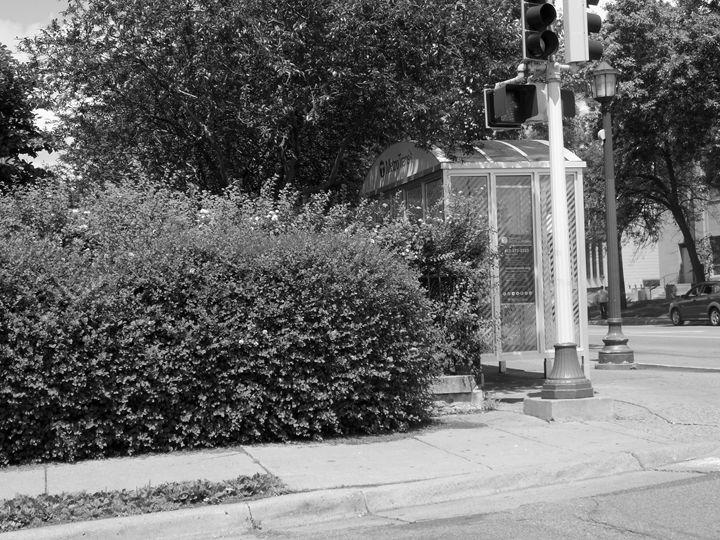 BUS STOP - Wildman