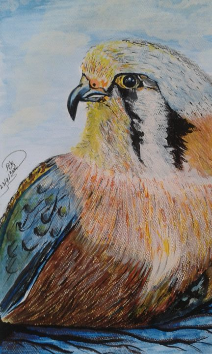 When Eagles Stare - Ragda k