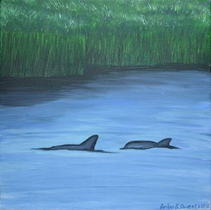 Ashley River Dolphins