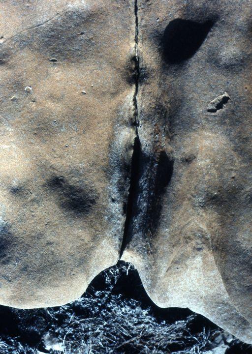"""Nude Rocks"" - Margaret Havins"