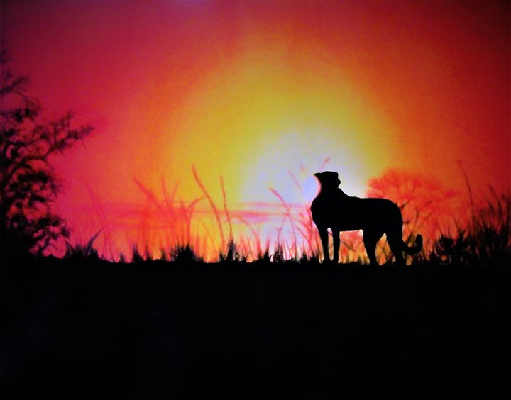 AFRICAN SUNSET - PamSutton