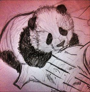 Panda - HeliX