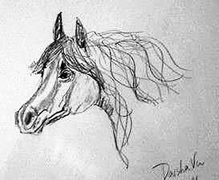 quarter horse - DaishaVu