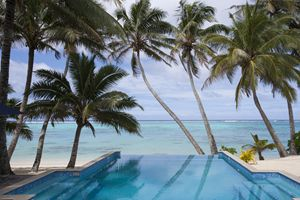 Coconut trees and a swimming pool.