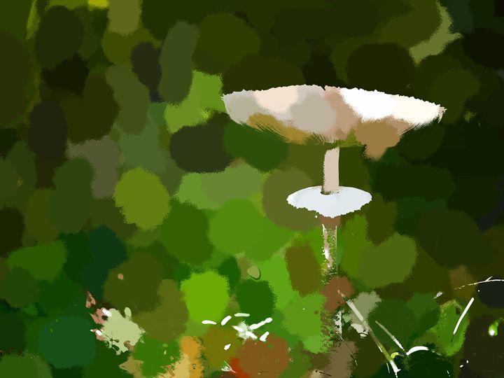 Mushroom Dreams - Paintings and prints