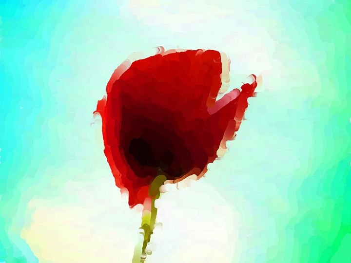 Poppies grow - Paintings and prints