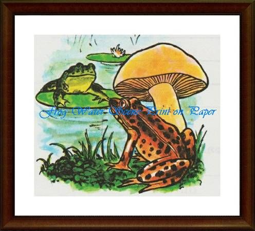 Frog Water Scene - Matrix Collection