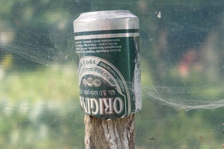 Tin and cobweb - Vaidoto art