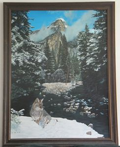 MOUNTAIN STREAM WITH COYOTE