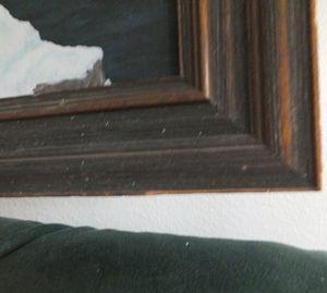 Chipped frame