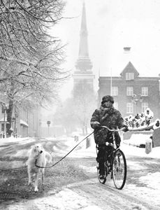 Walking the dog in winter - clifford shirley