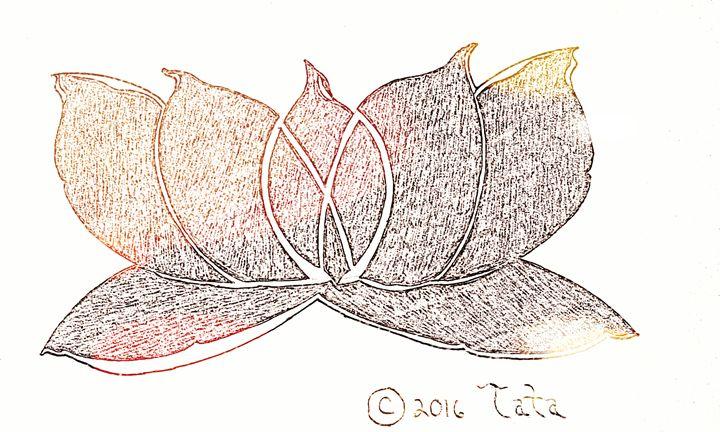A Lotus Beam of Calm - Tata Kimfa