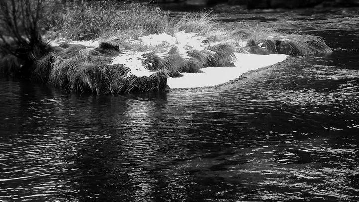 """River Island"" - The Photography of Michael C Bertsch"