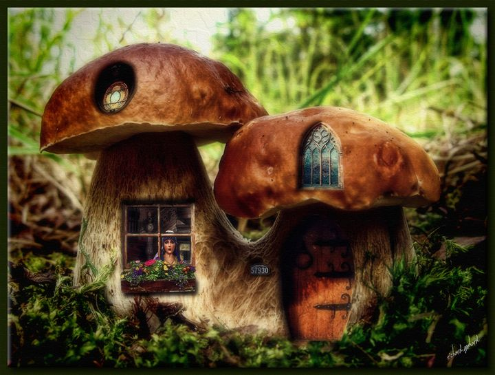 The Mushroom Cottage - Richard Gerhard
