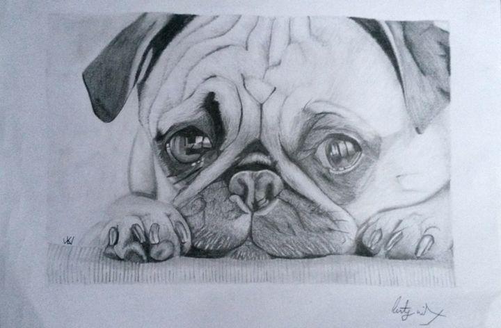 Pug puppy - Art by Kirsty Willcox