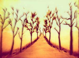 Sunset of Journey