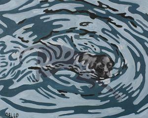 Labrador Swimming