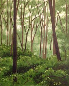 Rabun Woods I