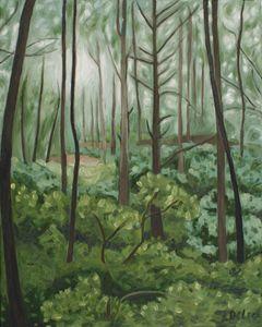 Rabun Woods II