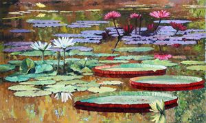 Colors on the Lily Pond