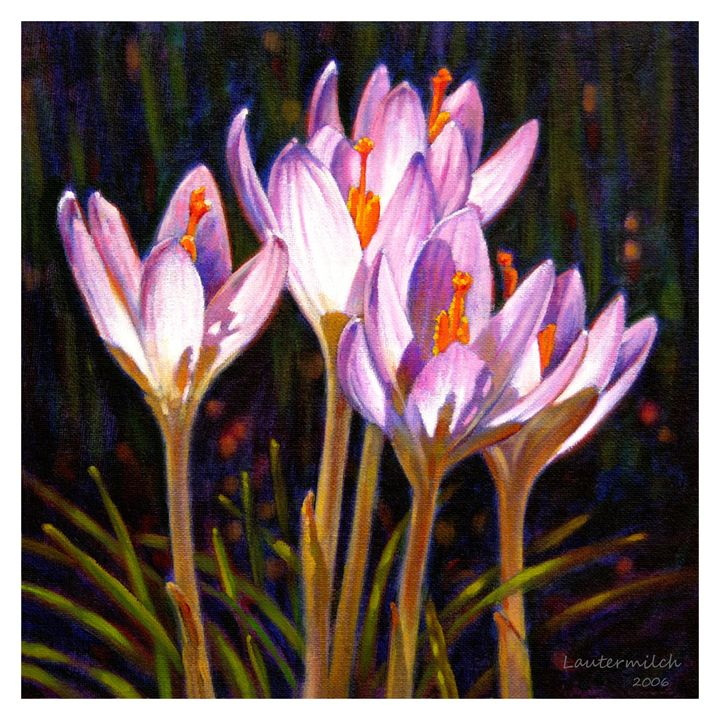 Crocus in Winter Sunlight - Paintings by John Lautermilch
