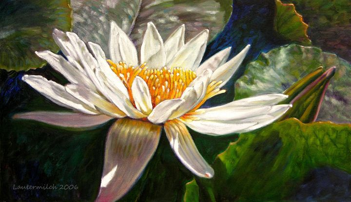 Sunlight on White Lily - Paintings by John Lautermilch
