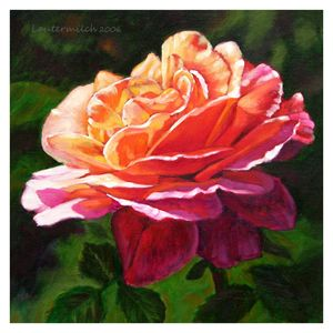 Rose Petals Catching Sunlight - Paintings by John Lautermilch