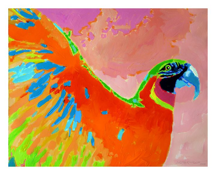 Parrot in Flight - Paintings by John Lautermilch