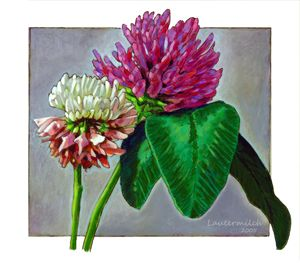 Clover - Paintings by John Lautermilch