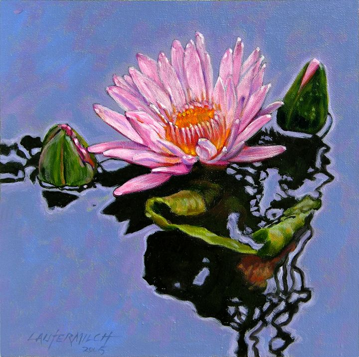 Pink Lily with Dancing Reflections - Paintings by John Lautermilch