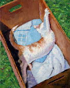 Cat in a Box - Paintings by John Lautermilch
