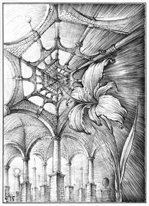 Hexagonal Dream