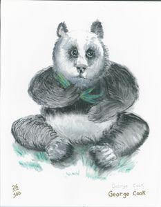 Panda - George's Art