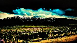 Sierra Nevada Color