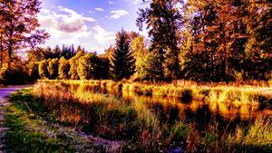 Beauty of Oregon