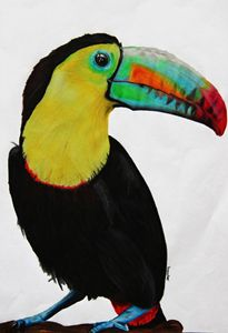 The Bright Toucan