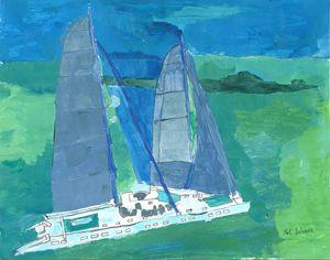 Sleek Catamaran