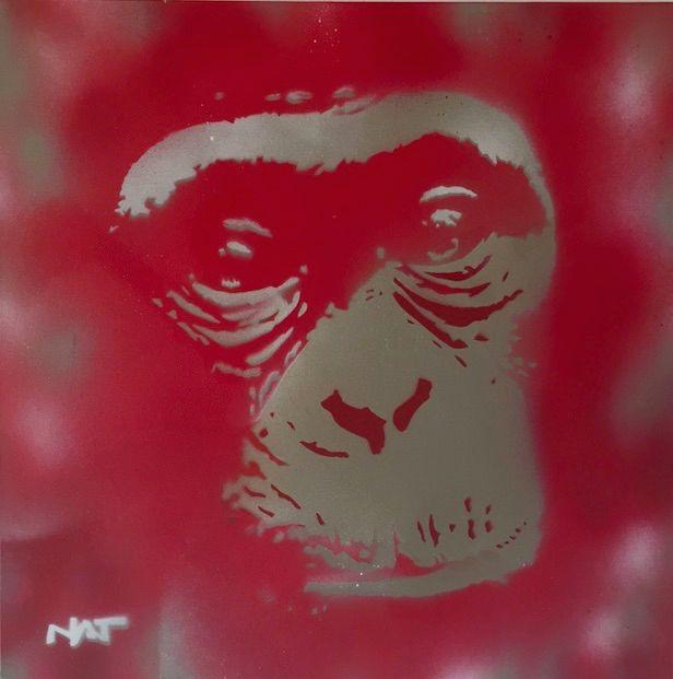 Chimpanzee - Natalie Rademeyer