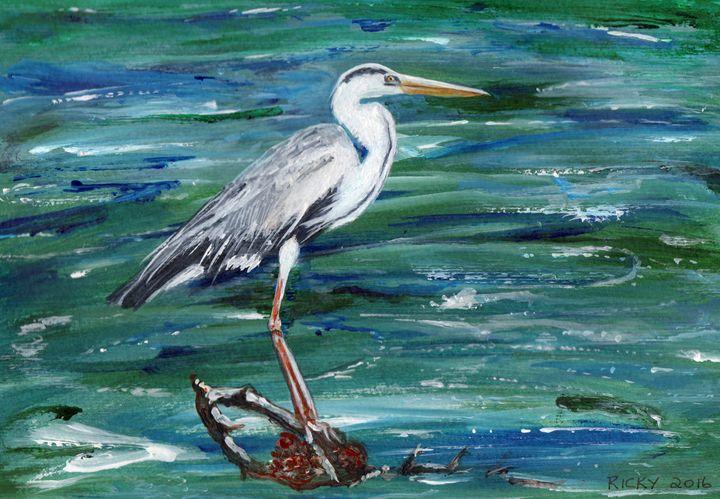 Grey Heron of Cornwall - Veronica Rickard