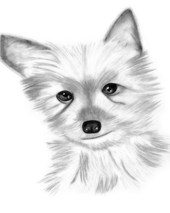 cute as a button - Chavis Art