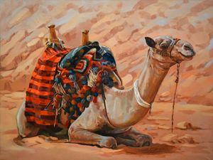 A Break In Sinai Desert