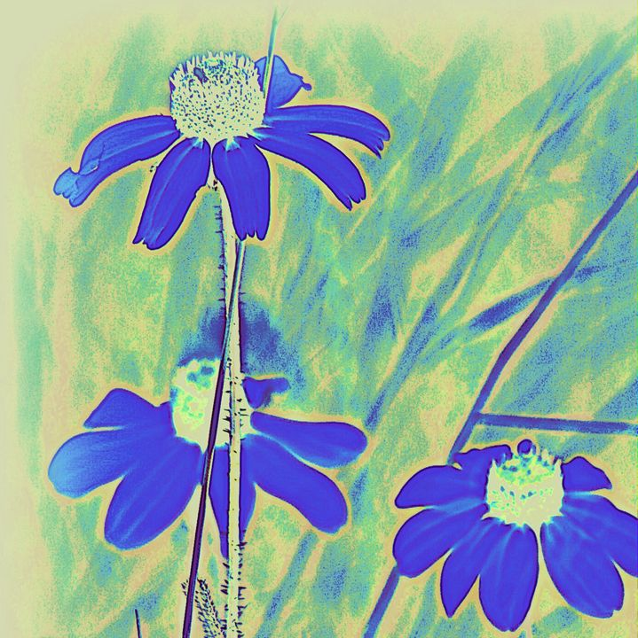 Blue Flower - A Touch of Forever by Cassie