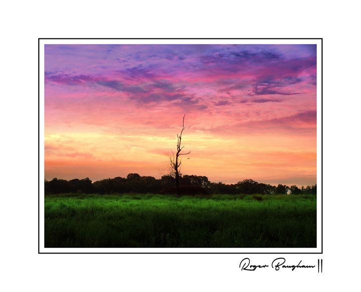 SUNSET - SIGNED - ARTOGRAPHY