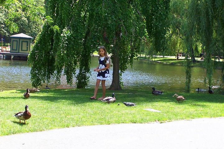 Boston Public Garden - Valentina Averina