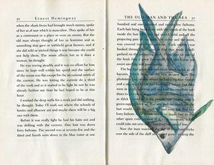 fishbook1