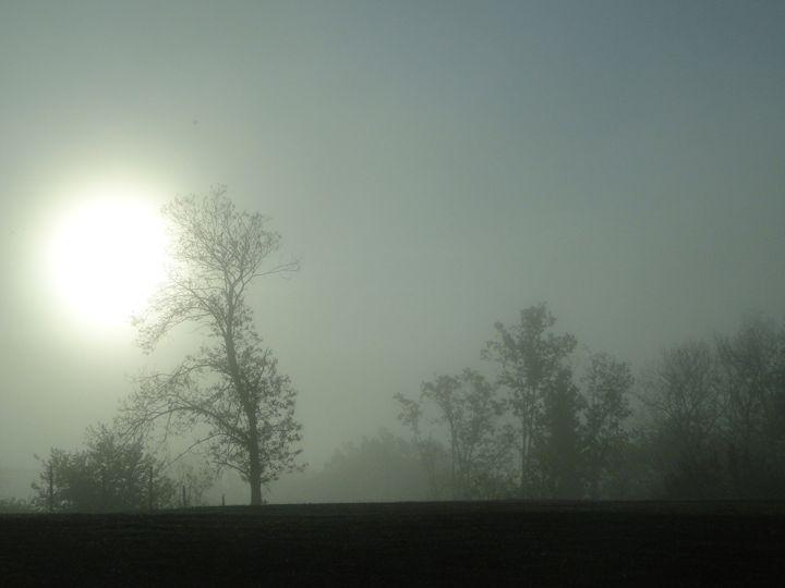 Brouillard matinal (morning fog) - V.R-L